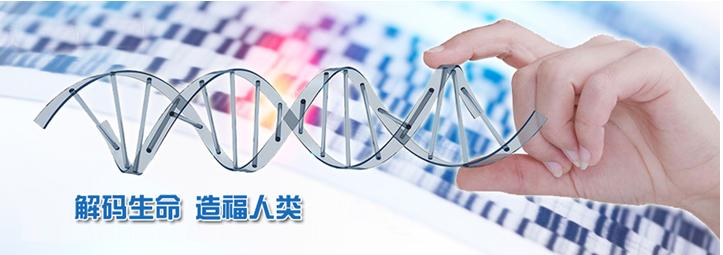 扫一扫,分享给微信好友  评论收藏基因检测是直销企业新宠? 专家:先别忙着高兴