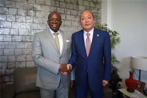 李金元非洲会见几内亚国务部长