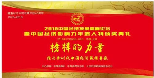 富迪荣获2018中国经济发展高峰论坛两项大奖
